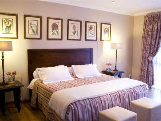 The Coral Tree Guest House - Pretoria vacation rentals