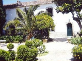 Paco Real Dom Pedro - Usseira vacation rentals