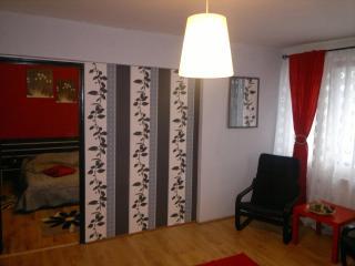 Apple Apartment - Romania vacation rentals