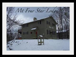 Mt. Four Star Lodge - Jim Thorpe vacation rentals