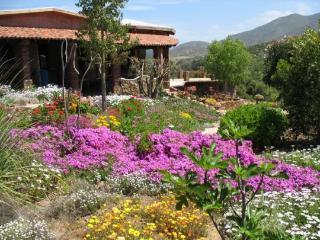 Quinta Maria en La ruta del vino - Ensenada vacation rentals