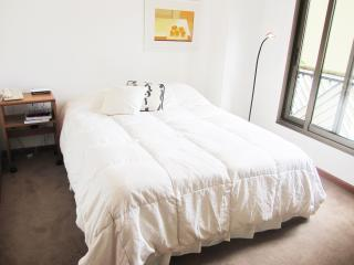 Well Located in Recoleta - Buenos Aires vacation rentals