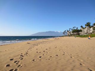 Summer time $1500/mo-  South Maui, Kihei Akahi, Walk 500 foot to beach - Kihei vacation rentals
