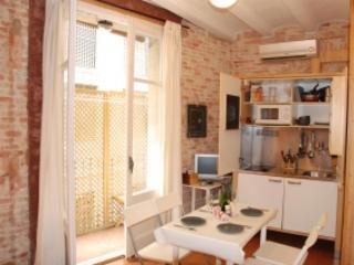 RAMBLAS STUNNING APARTMENT  BARCELONA JUST 25€P/PN - Barcelona vacation rentals