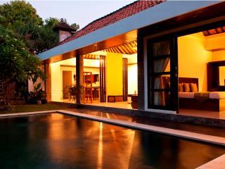 3 Bedroom Villa with private pool in Seminyak - Seminyak vacation rentals
