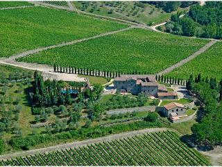 ANDROMEDA Villa - CASALTADIPESA com - Castellina In Chianti vacation rentals