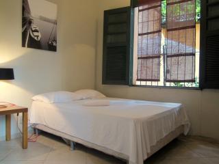 One Bedroom In Santa Teresa / Lapa - Rio de Janeiro vacation rentals