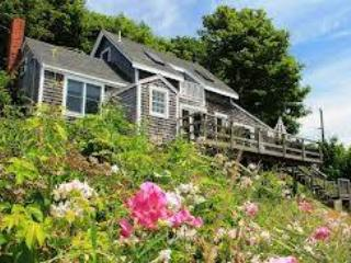 2 Bd Cottage-Walk to Beach - WHART65 - Image 1 - Wellfleet - rentals