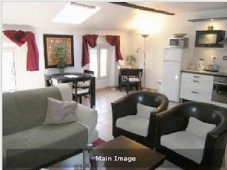 Stunning apartment in centre - Palais  and beach - Cannes vacation rentals