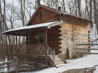 Chestnut Ridge Cabin - Stanton vacation rentals