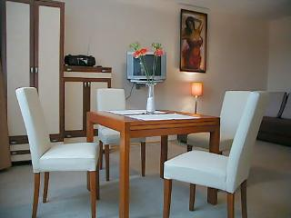 Nirwana 4 person + free parking and wifi - Krakow vacation rentals