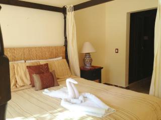 Playacar Paseo del Sol 102 Cenote - Playa del Carmen vacation rentals