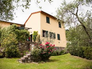 Rental with Swimming Pool & Wifi at Gelsomino in Lucca - Lucca vacation rentals
