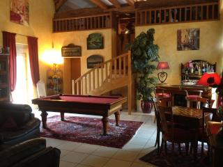 Charming cottage 350m ²  for 15-17 people + Spa - Auxerre vacation rentals