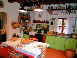 Lovely Cottage with garden in the Heart of Tuscany - Palaia vacation rentals
