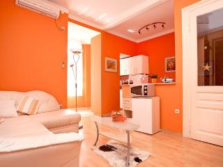 Apartment in Pula Center just next to amphitheatre - Pula vacation rentals