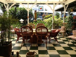 Hale Kawehi in Quaint  Downtown Hilo - Hilo vacation rentals