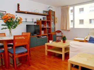 Beautiful apartment centre wifi 5 min from Pedrera - Barcelona vacation rentals