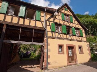 2 bedroom House with Internet Access in Oberbronn - Oberbronn vacation rentals