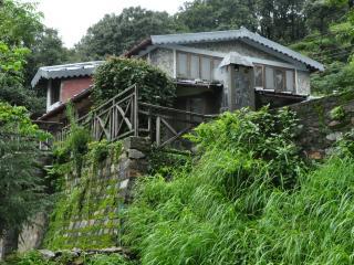 Pangot Woodside Retreat - Rudrapur vacation rentals