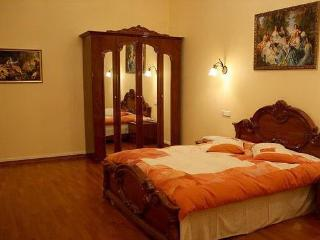 Spacious 4 Bedroom Apartment in Kiev center - Kiev vacation rentals