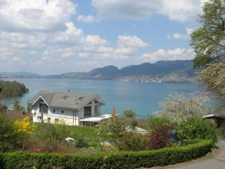 Nice Condo with Internet Access and Grill - Spiez vacation rentals