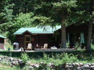 2 bedroom Cabin with Internet Access in Bozeman - Bozeman vacation rentals