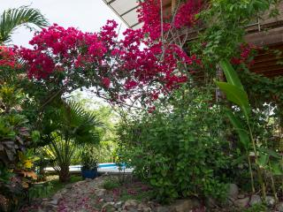 Montezuma Beach home with views of water & jungle - Montezuma vacation rentals