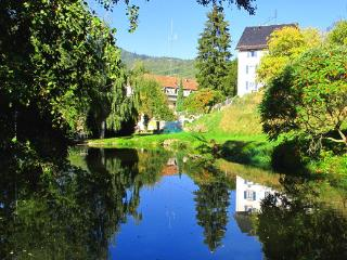 Maison Bellevue , Munster-Alsace-fr, free wifi and parking,lake, barbecue - Munster vacation rentals