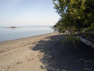 Beach Walk - Lummi Island vacation rentals