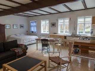 Apartment Marina - Iceland vacation rentals