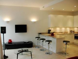 Loft Style Apartment in Crois des Petit Champs in Paris - Paris vacation rentals
