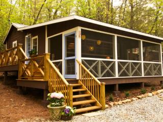 Charming 2 bedroom Cabin in Clarkesville - Clarkesville vacation rentals