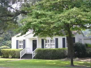The Seagull Cottage - Saint Simons Island vacation rentals