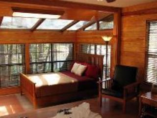 THE BEST PLACE TO STAY ON RIVER RD - THE LODGE - Image 1 - New Braunfels - rentals