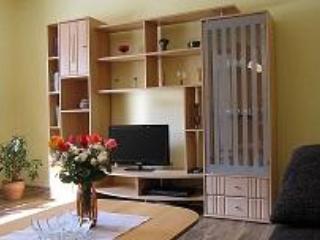 LLAG Luxury Vacation Apartment in Grossrueckerswalde - 538 sqft, quiet, natural, cozy  (# 3831) - Thermalbad Wiesenbad vacation rentals