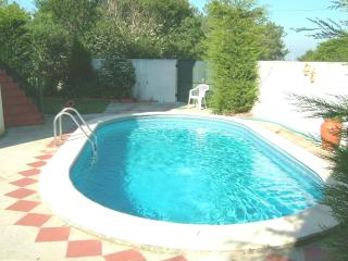 Charming 3bd former windmill,nice countryside - Braga vacation rentals