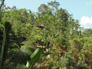 Perfect House with Deck and Internet Access - Ubud vacation rentals