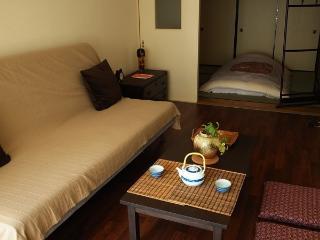Spacious apt Nishi Ikebukuro 3 in central Tokyo - Nakano vacation rentals