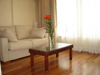 NICE AND BRIGHT STUDIO IN RECOLETA - Buenos Aires vacation rentals