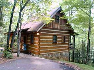 "Gatlinburg Smoky Mountain Honeymoon ""BLUE HEAVEN"" - Cosby vacation rentals"