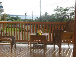 Roydons Apartments Grenada 2 Bedroom Apartments - Grenada vacation rentals