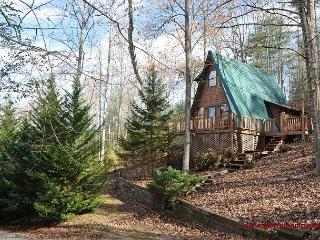 Are you looking for seclusion, but with all the fun around the corner? - North Georgia Mountains vacation rentals