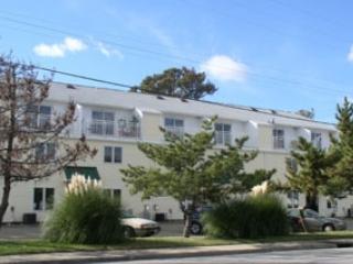1736 Baltic Avenue - Virginia Beach vacation rentals