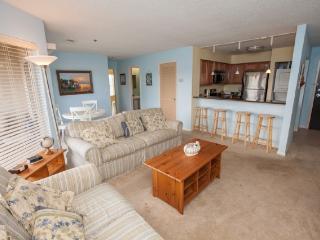 Playa Rana Unit 313 - Virginia Beach vacation rentals