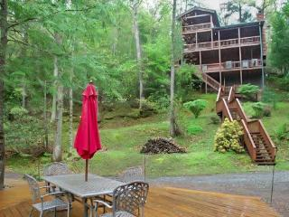 BEARS NEST- 3BR/3BA- CABIN SLEEPS 10, LOCATED ON THE TOCCOA RIVER, GAS & CHARCOAL GRILL, HOT TUB, FIRE PIT, DECK OVER THE RIVER, SATELLITE RADIO, WIFI, NETFLIX ONLY, WII CONSOLE, PET FRIENDLY! STARTING AT $220 A NIGHT - Blue Ridge vacation rentals