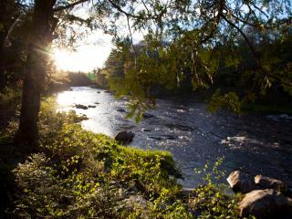 Beautiful riverfront cabin near lakes, waterfalls - Abbot Village vacation rentals