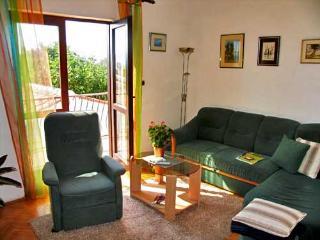 Apartments and Room Jadranka - 13851-A1 - Lukoran vacation rentals