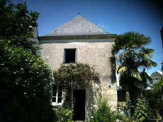 Villandry, au coeur des châteaux de la Loire, jolie maison donnant sur jardin et petite piscine privée - Tours vacation rentals