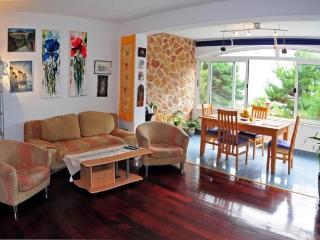 Apartments Gilve - 30801-A3 - Milna vacation rentals